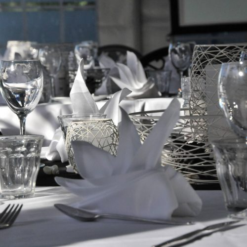 Functions & Events At Dolphin Marine Conservation Park
