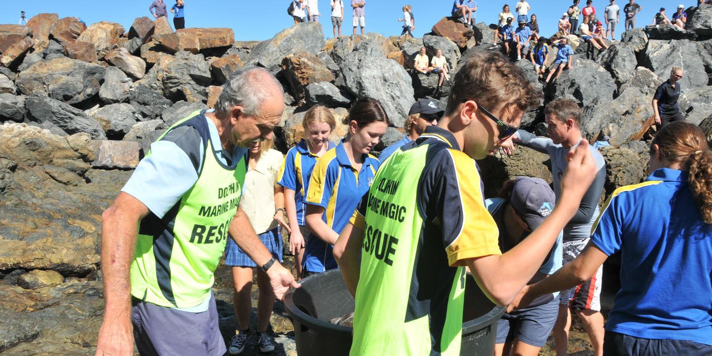 Marine Conservation on the Coffs Coast