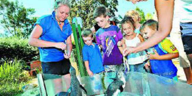 Kids Activities Coffs Harbour