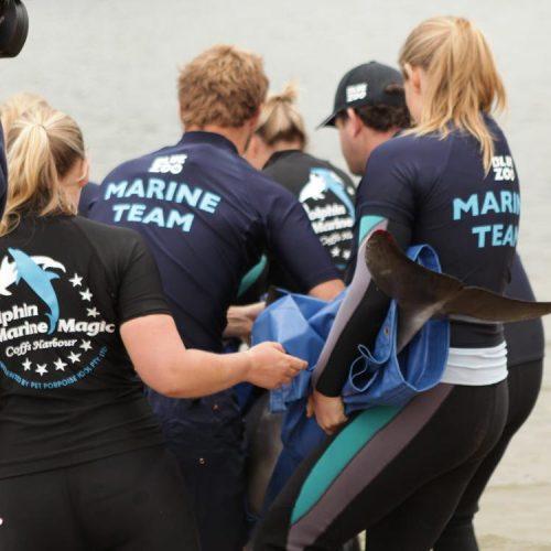 Marine Conservation Coffs Harbour