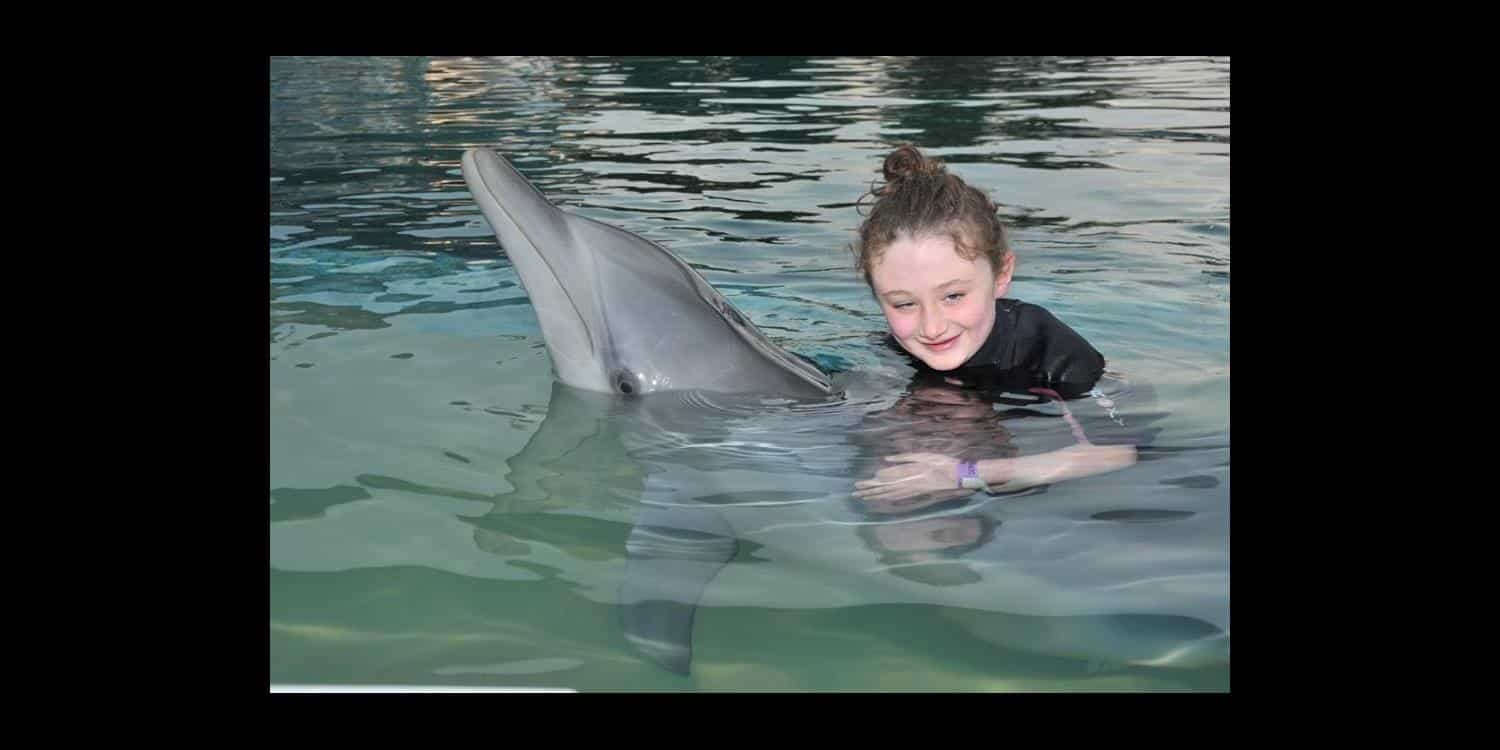 Dolphin Experience Coffs Harbour