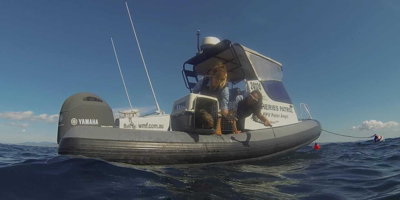 Marine Rescue in Coffs Harbour