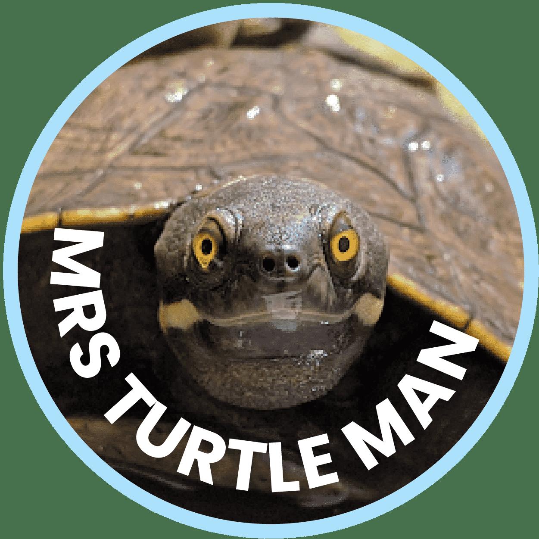 Mrs Turtle Man Freshwater Turtle