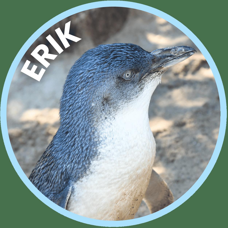 Erik Penguin Family